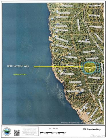 668 Carefree, Friday Harbor, WA 98250 (#1435870) :: NW Home Experts