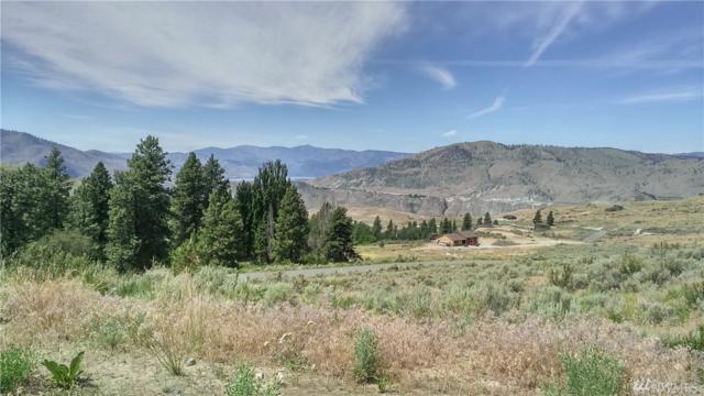 26 Corral Creek Dr Lot 6, Orondo, WA 98843 (#1436340) :: Kimberly Gartland Group