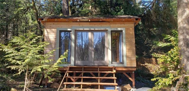 181 E Blue Sky Lane, Shelton, WA 98584 (#1436420) :: NW Home Experts