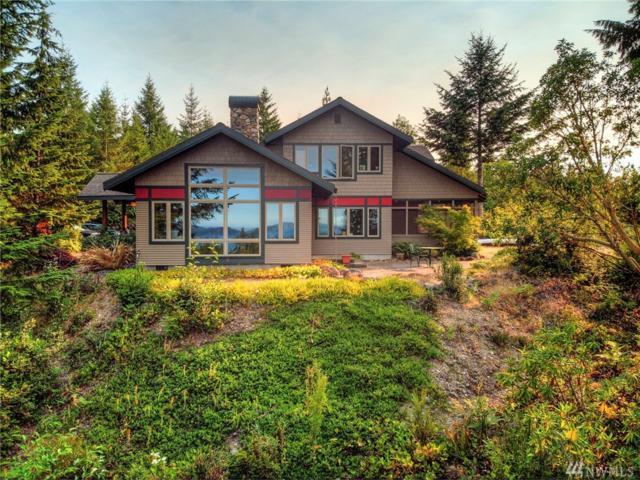 820 N Hamma Ridge Dr, Lilliwaup, WA 98555 (#1436843) :: Ben Kinney Real Estate Team
