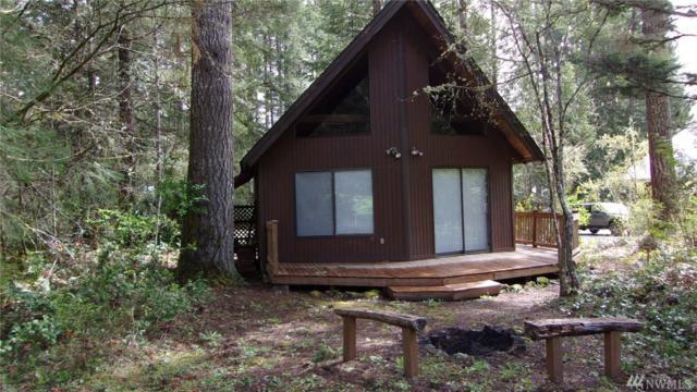 21 N Mt. Noyes Place, Hoodsport, WA 98548 (#1436848) :: McAuley Homes