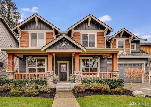857 SE Mt. Teneriffe Place, North Bend, WA 98045 (#1436949) :: Better Properties Lacey