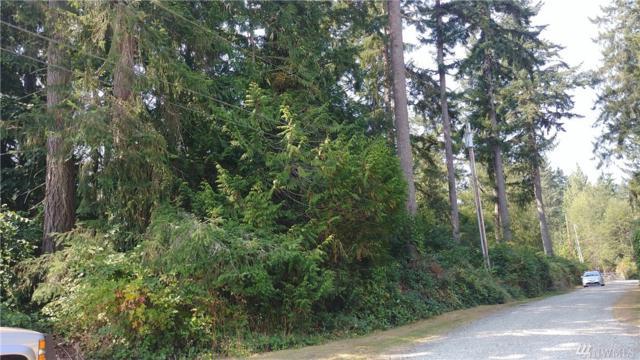 0 Peter Hagen Rd, Seabeck, WA 98380 (#1437530) :: Mike & Sandi Nelson Real Estate