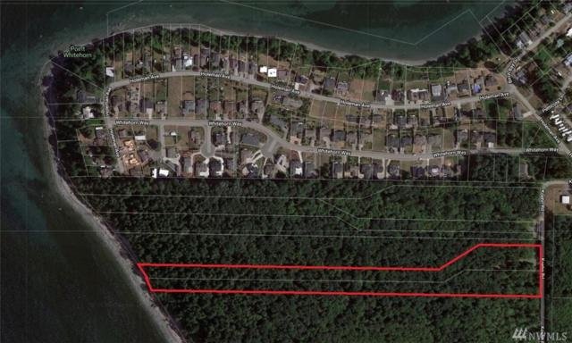 6861 Koehn Rd, Blaine, WA 98230 (#1437783) :: NW Home Experts