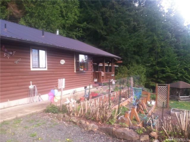 220 Seamount Drive, Brinnon, WA 98320 (#1438326) :: Real Estate Solutions Group