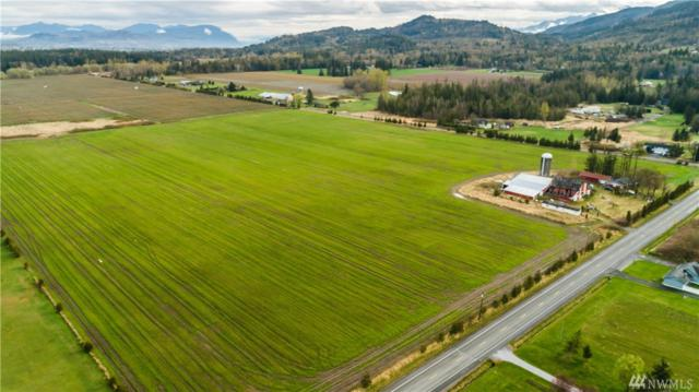 3670 South Pass Rd, Everson, WA 98247 (#1438421) :: Keller Williams - Shook Home Group