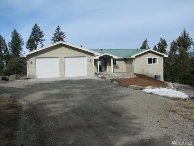 358 W Corral Dr, Oroville, WA 98844 (#1438551) :: Northern Key Team