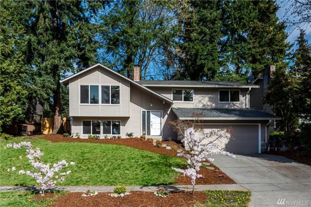 6516 121st Ave SE, Bellevue, WA 98006 (#1438869) :: Real Estate Solutions Group