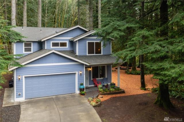 38 Tumbling Water Dr, Bellingham, WA 98229 (#1438977) :: KW North Seattle