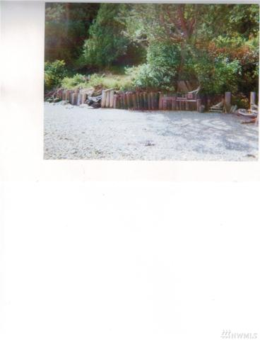 0 No Street Address, Olalla, WA 98359 (#1439120) :: NW Home Experts