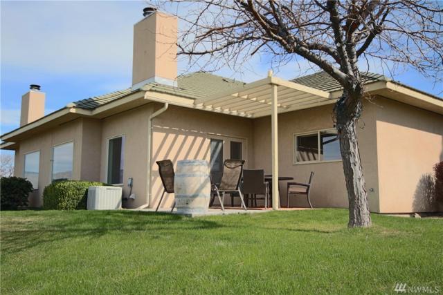 610 Desert Canyon Pkwy, Orondo, WA 98843 (MLS #1439203) :: Nick McLean Real Estate Group