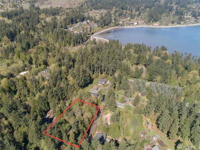 9351 Moss Lane NE, Bainbridge Island, WA 98110 (#1439262) :: Ben Kinney Real Estate Team