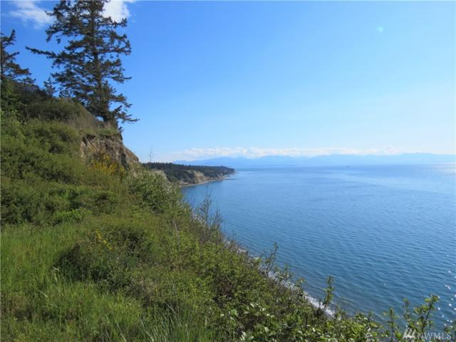 2152 W Beach Rd, Oak Harbor, WA 98277 (#1439660) :: Kimberly Gartland Group