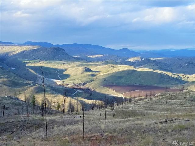 53 E Mountain Point Rd, Brewster, WA 98812 (#1439937) :: Kimberly Gartland Group