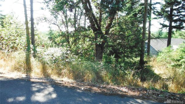 9999 Brittany Lane, Sequim, WA 98382 (#1439985) :: McAuley Homes