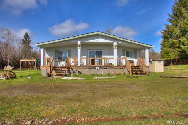 46 Axford Prairie Lane, Hoquiam, WA 98550 (#1440023) :: Ben Kinney Real Estate Team