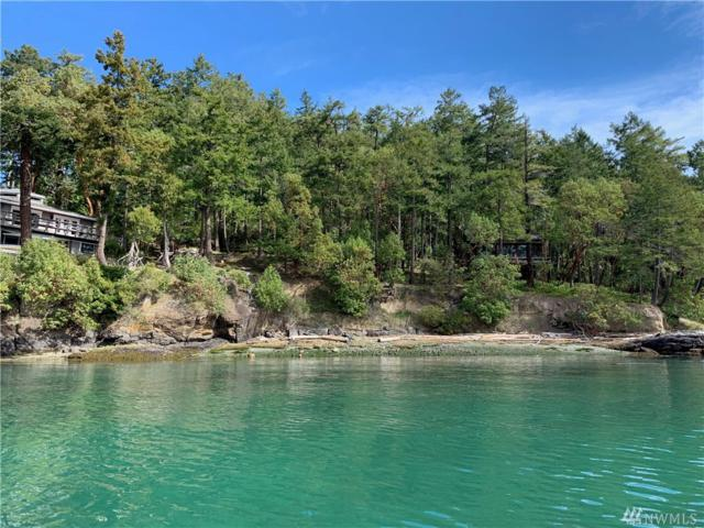 6 Brown Island, San Juan Island, WA 98250 (#1440511) :: Homes on the Sound