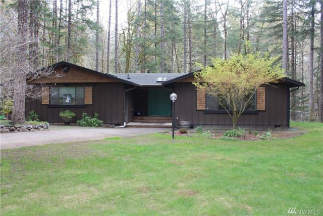 651 N Dow Creek Dr, Hoodsport, WA 98548 (#1440646) :: McAuley Homes