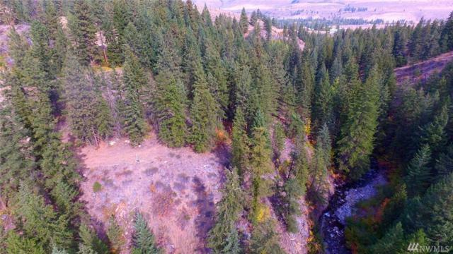 4 Mountainside Wy, Winthrop, WA 98862 (#1440728) :: Real Estate Solutions Group