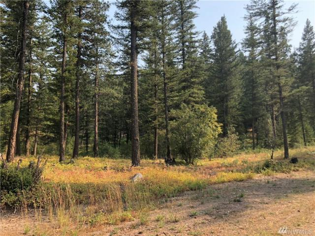 0-LOT 147 Yellowleaf Rd, Winthrop, WA 98862 (#1440857) :: Better Properties Lacey