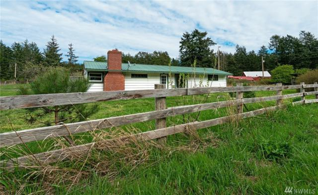 2257 Mud Bay Rd, Lopez Island, WA 98261 (#1441086) :: Ben Kinney Real Estate Team