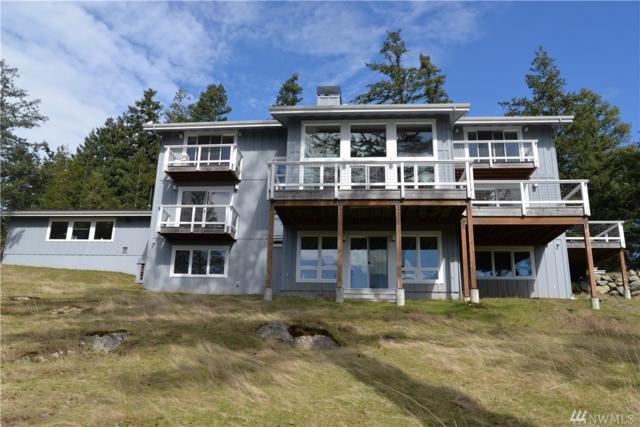 163 Serendipity Lane, Orcas Island, WA 98245 (#1441427) :: Ben Kinney Real Estate Team