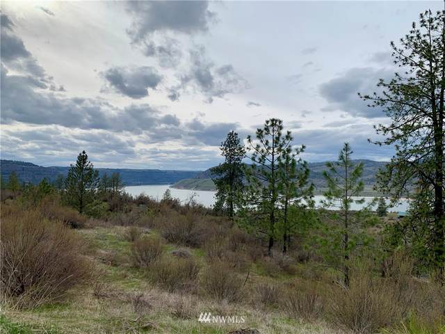 39325 Gunsight Bluff N, Seven Bays, WA 99122 (#1441433) :: My Puget Sound Homes