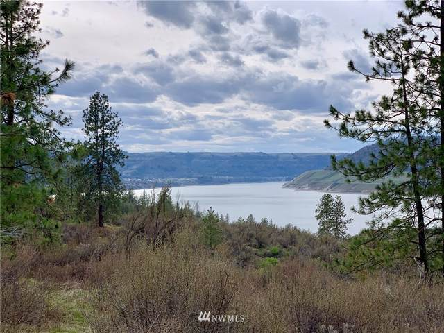 39275 Gunsight Bluff N, Seven Bays, WA 99122 (#1441457) :: My Puget Sound Homes