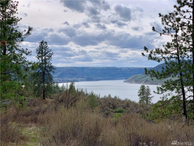 39275 Gunsight Bluff N, Seven Bays, WA 99122 (#1441457) :: Kimberly Gartland Group