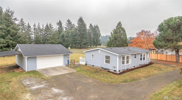 18930 Nutmeg St SW, Rochester, WA 98579 (#1442105) :: Northwest Home Team Realty, LLC
