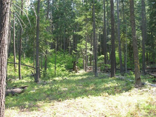 0-XXX Tall Pines Dr, Cle Elum, WA 98922 (#1442159) :: Center Point Realty LLC