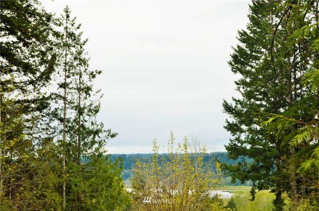 3 State Route, Belfair, WA 98528 (#1442181) :: The Royston Team