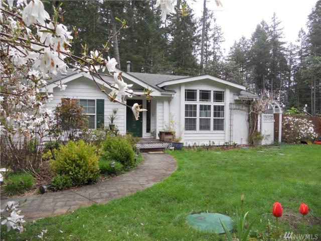 11527 Lake Josephine Blvd, Anderson Island, WA 98303 (#1442381) :: Kimberly Gartland Group