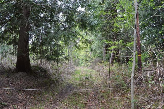 331 E Plantation Wy, Shelton, WA 98584 (#1442382) :: Kimberly Gartland Group