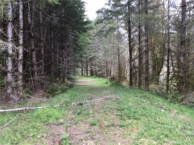 180-xx Johnson Creek Rd SE, Tenino, WA 98589 (#1442618) :: Northwest Home Team Realty, LLC
