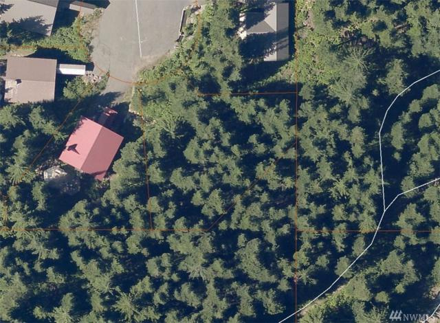 0-xxxx Ober Strasse, Snoqualmie Pass, WA 98068 (#1443003) :: Costello Team