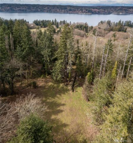 12820 SW Bank Rd, Vashon, WA 98070 (#1443051) :: The Royston Team