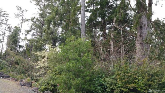 1101 309th Place, Ocean Park, WA 98640 (#1443098) :: Real Estate Solutions Group