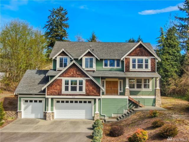 7315 164th St SE, Snohomish, WA 98296 (#1443209) :: Real Estate Solutions Group