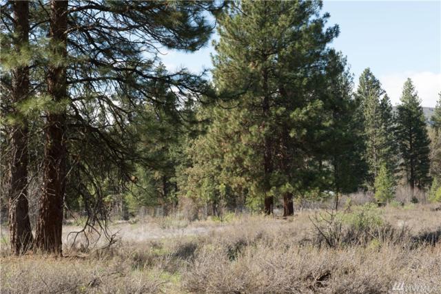 28-Lot Pine Loop, Winthrop, WA 98862 (MLS #1443234) :: Nick McLean Real Estate Group