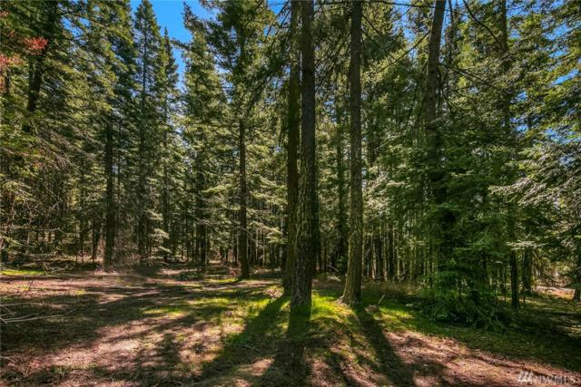 12170 State Route 903, Ronald, WA 98940 (#1443263) :: Ben Kinney Real Estate Team