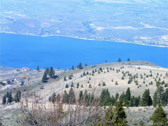 294 Hawks Ridge Rd, Chelan, WA 98816 (#1443358) :: Costello Team
