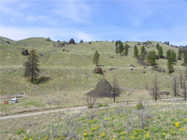 0-nna Springs Canyon Rd, Orondo, WA 98843 (#1443779) :: Keller Williams Western Realty