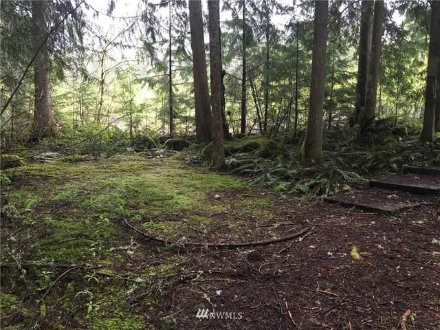 7480 Canyon View Drive, Glacier, WA 98244 (#1443865) :: Better Properties Real Estate