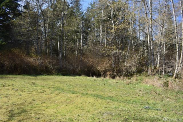 0-Lot 16 Pond Place, San Juan Island, WA 98250 (#1443939) :: Real Estate Solutions Group