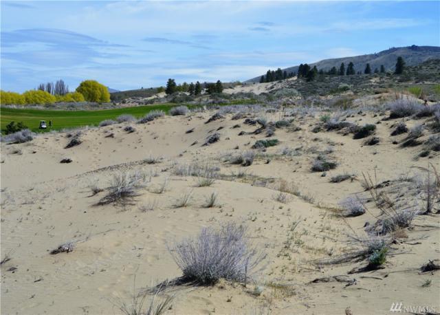 402 Desert Canyon Blvd, Orondo, WA 98843 (MLS #1443948) :: Nick McLean Real Estate Group