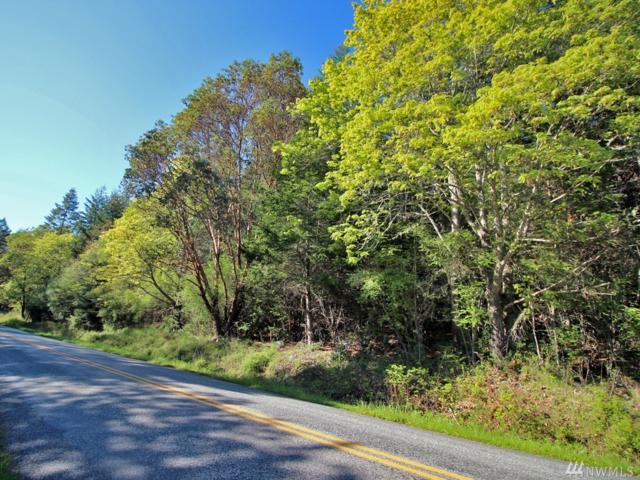 0 West Side Rd, San Juan Island, WA 98250 (#1444221) :: Ben Kinney Real Estate Team