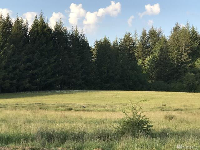 5344 216th Ave SW, Centralia, WA 98531 (#1444309) :: Real Estate Solutions Group