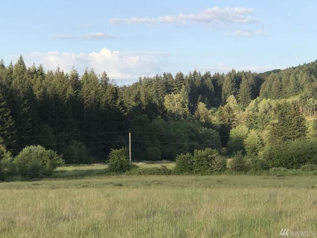5336 216th Ave SW Lot 3, Centralia, WA 98531 (#1444347) :: Real Estate Solutions Group