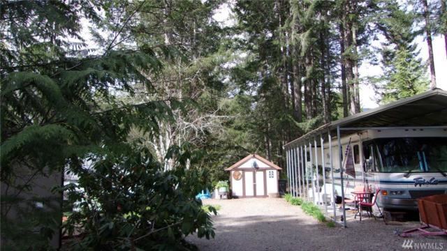 420 N Fairway Dr W, Hoodsport, WA 98548 (#1444626) :: McAuley Homes